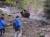 Phawngpui National Park Trekking And Camping
