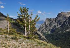 Phelps Lake Trailviews - Grand Tetons - Wyoming - USA