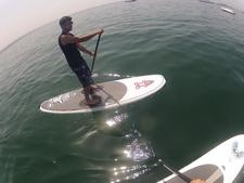 Phil - Wave Technique
