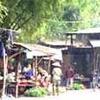 Nam Phong Vila Antiga