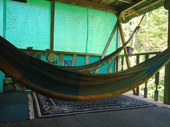 Paraiso Verde Corcovado Tour Photos