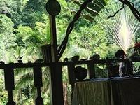 Paraiso Verde Corcovado Trip