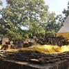 Phra que Doi Khao Pu