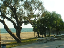 Picnic At Topanga Beach