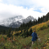 Piegan Pass Trail