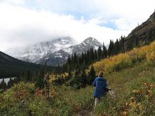 Piegan Pass Trail At Glacier - Montana - USA