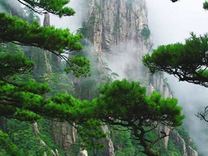 Tour package in Huangshan Area Photos
