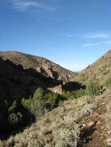 Pine Creek Canyon