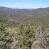 Pine Nut Mountains