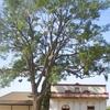 Pio Pico Casa In Whittier