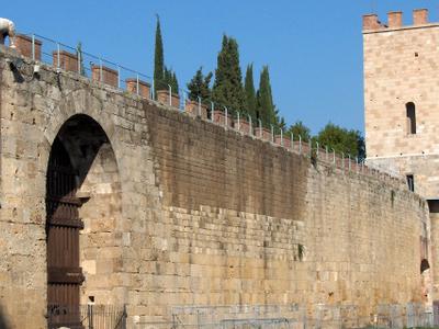 Pisa . Campo .wall