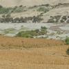 Pisco River Valley