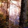 Pisgah NF Views - North Carolina