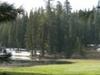 Plaskett Meadows Picnic