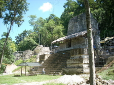 Plaza Of The Seven Temples - Tikal - Guatemala