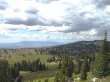 Poison Creek Trail