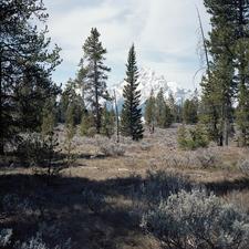 Polecat Creek Loop - Grand Tetons - Wyoming - USA
