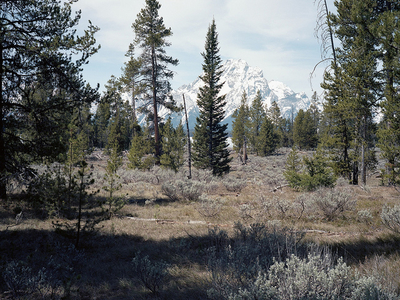 Polecat Creek Loop - Grand Tetons - Wyoming - USA