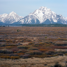 Polecat Creek Loop Trail - Grand Tetons - Wyoming - USA
