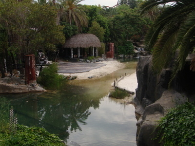 Lake And Show Area