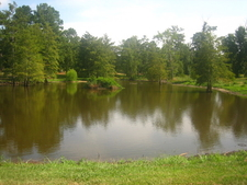 Pond At Greenwood Memorial Park In Pineville