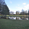 Pond In Drottningholm Palace
