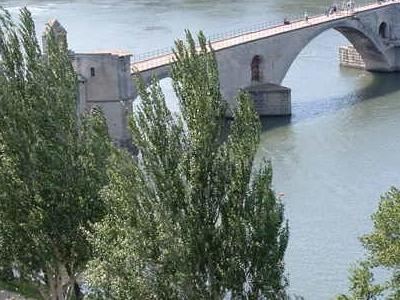 Pont D'Avignon From Le Rocher Des Doms