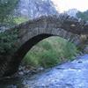 Pont De Sant Antoni Bridge