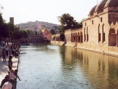Pool Urfa Sanliurfa