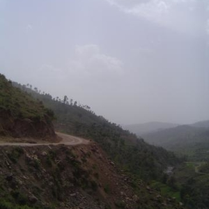 Poonch Road