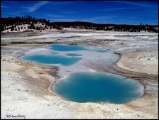 Porcelain Basin - Yellowstone - USA