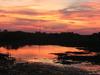 Pordosolno Pantanal