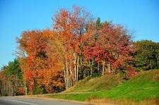 Portland ME Fall Colors
