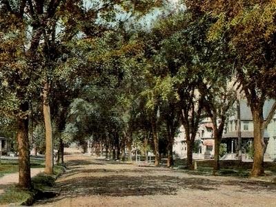 Postcard Greenwood Ave Bethel C T 1 9 0 9