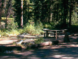 Power Plant Campground