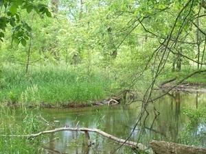 Prairie Río