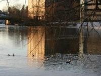 Presumpscot River