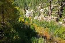 Promontory Trail 278 - Tonto National Forest - Arizona - USA