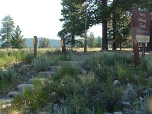Prosser Ranch Campground Grupo