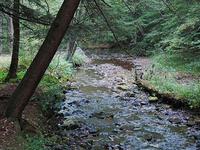 Prouty Lugar Parque Estadual