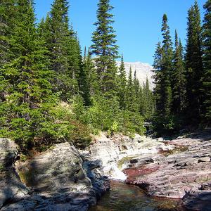 Ptarmigan Falls Trail Views At Glacier - Montana - USA