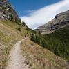 Ptarmigan Lake Trail - Glacier - Montana - USA