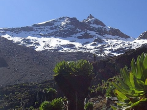 6 Days Mt Kenya Climbing Tour