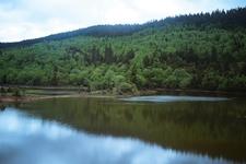 Pudacuo National Park Landscape