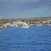 Puerto Ayora Santa Cruz