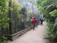 Pukaha Mount Bruce Wildlife Centre
