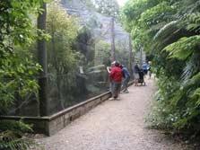 Pukaha Mount Bruce Wildlife Centre - North Island - New Zealand