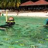 Pulau Payar Marine Park - Langkawi Island