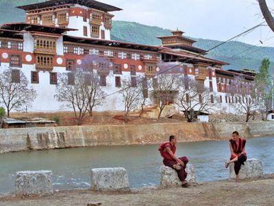 Punakha Dzong - View