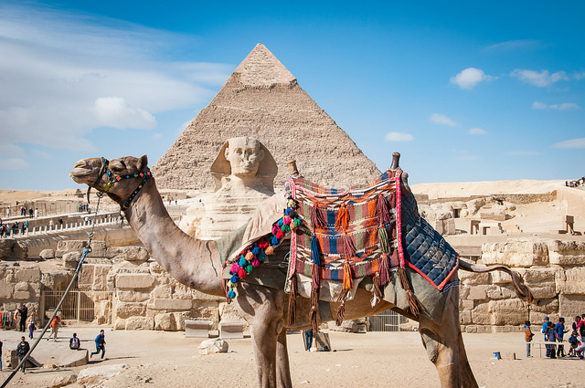 Short Vacation IN Cairo And Hurghada Photos